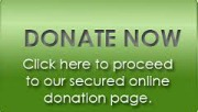 Donate secure green small